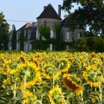 Chateau Des Etoiles House