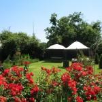 Chateau Des Etoiles Gardens